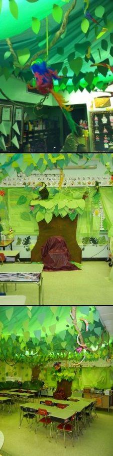 Rain Forest Theme