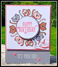 Tracie StLouis Ottawa Stampin' Up! Dog Cards, Kids Cards, Mini Albums, Pretty Cats, Pretty Kitty, Stamping Up Cards, Animal Cards, Card Making Inspiration, Card Sketches