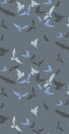 FLOCK OF BIRDS 394031