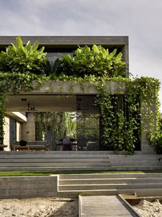Interior Fit Out, Home Interior Design, Residential Architecture, Interior Architecture, Concrete Architecture, Brisbane Architects, Landscape Design, Green Landscape, Outdoor