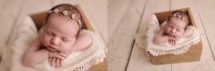 Studio Newborn Session with Julia Marie Photography in St. Louis, Missouri.