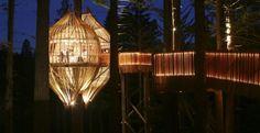 http://www.architetturaecosostenibile.it/architettura/nel-mondo/ristorante-albero-bozzolo-crisalide-171.html
