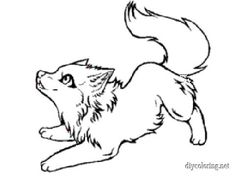 Baby Wolf Coloring Pages Wolf colors Wolf sketch Wolf drawing easy