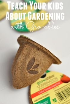 Garden Journal to Teach Kids About Gardening Looking for a fun way to teach kids about gardening? Come grab my free Garden Journal Printable and get more tips on gardening with kids. Vegetable Garden For Beginners, Gardening For Beginners, Gardening Tips, Green Onions Growing, Garden Journal, Growing Seeds, Companion Planting, Growing Vegetables, Food Hacks