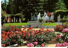 Rosaleda de Madrid (Jardín de Ramón Ortiz) en Madrid, Madrid