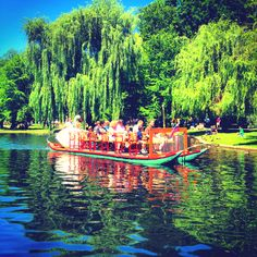 Picnic and ride the Swan Boat in the Boston Public Garden