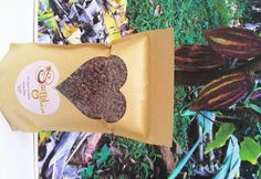 Sacred Chocolate - Raw Cacao Nibs - Ecuadorian, Arriba Nacional, 100% Organic - $19.95 for 1 lb.