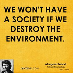 environmental quotes - Google Search