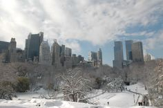 central park: New York City
