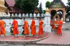 La processione delle elemosine - Luang Prabang