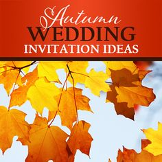 Autumn Wedding Invitation Ideas. Inspiration and invitations with Autumn leaves, sunflowers, and modern designs.