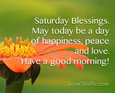 Happy Saturday Pictures, Saturday Images, Friday Morning Quotes, Good Morning Quotes, How To Have A Good Morning, Good Morning Wishes, Wednesday Greetings, Days Of Week, Gods Love