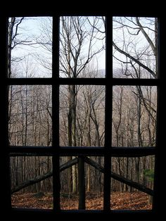 Shenandoah National Park, cabin window view