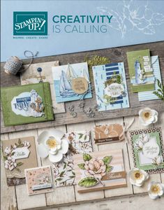 Stampin' Up! 2019 Annual Catalog cover, Stampin' Up! Fun Fold Cards, Folded Cards, Cards Diy, Handmade Cards, Stampin Up Anleitung, Envelope Punch Board, Pretty Cards, Punch Art, Paper Design