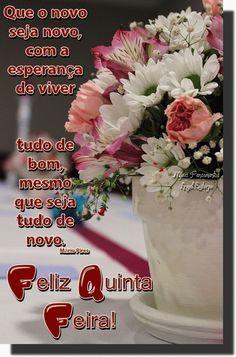 Bom Dia Feliz Quinta Feira Gif 244 Feliz Quinta Feira Bom Dia