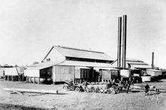 Maryborough Sugar Mill and employees, Maryborough, ca. 1910.