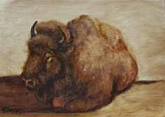"""Daily Paintworks - """"Buffalo laying down-study"""" - Original Fine Art for Sale - © Veronica Brown"""