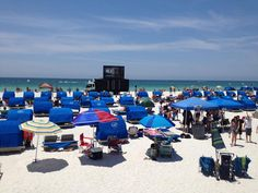 Tampa Bay Ray's beach watch party at TradeWinds Island Resorts in St. Rays Baseball, Baseball Season, Bay Sports, Beach Watch, Tampa Bay Rays, Island Resort, Treasure Island, Embedded Image Permalink, Dolores Park