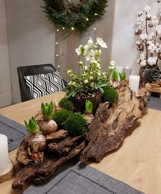 Winter decoration for the dining table with tree bark and moss- Winterdeko für den Esstisch mit Baumrinde und Moos Winter decoration for the dining table with tree bark and moss - Christmas Candle Decorations, Winter Centerpieces, Christmas Candles, Christmas Crafts, Table Decorations, Christmas Tree, Table Centerpieces, Deco Floral, Floral Arrangements