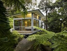 nature house with lots of windows