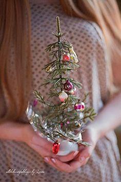 little Christmas tree Christmas Mood, Little Christmas, Christmas Photos, All Things Christmas, Vintage Christmas, Christmas Bulbs, Merry Christmas, Christmas Decorations, Christmas Ideas