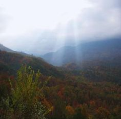 Whether your looking for a family vacation or a girls retreat, come visit the Smoky Mts of Tennessee and have a fun,filled vacation with the kids or a relaxing getaway with some down time away from the rest of the world.  The Beary Blessed Cabin offers you a mt. top retreat with a great location, complete with 2BR/2Baths!