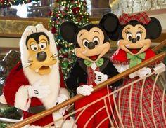 Holiday favorites return to Walt Disney World, Disney Cruise Line, and Adventures by Disney Disney World Resorts, Disney Vacations, Disney Parks, Walt Disney, Disney Fun, Christmas Cruises, Disney Christmas, Paris Christmas, Disney Holidays