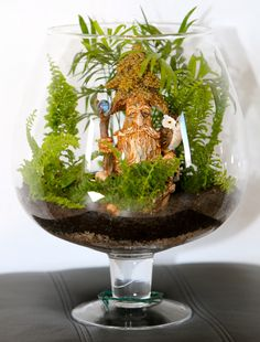 The Wise Old Tree. Tropical Terrariums, Terraria, Dollhouse Miniatures, Succulents, Gardening, Fantasy, Landscape, Plants, Art