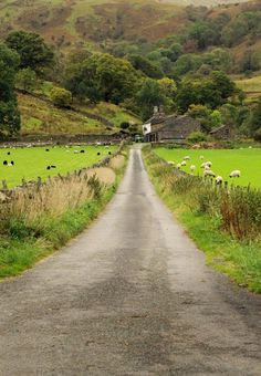 The long road home (Lake District, England) by Ann Cameron