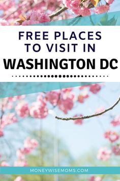 Planning a family trip to Washington DC? This list of 20 spots are perfect for tweens and teens, and they're all FREE! Best Picture For cape flattery Washington For Your Taste You are looking for some Free Things To Do, How To Memorize Things, Cape Flattery Washington, Washington Dc Travel, Spring Activities, Travel Usa, Travel Pictures, Spring Break, Tween
