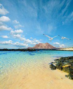 Abschalten auf Fuerteventura: 1 Woche All Inclusive schon für 572€ inkl. Flügen & Transfer