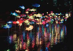 Seoul Lantern Festival - Korea