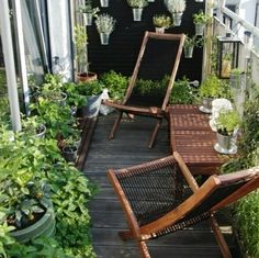 Small garden on the Balcony