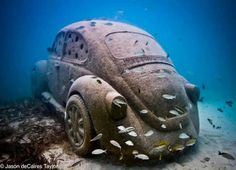 Sub Aquatic Super Bug... even at the bottom of the sea floor this bug doesn't look out of place. The perfect fusion of Art meets Artificial reef. This is not a dumped car, it's actually an installation/sculpture by innovative artist Jason deCaires Taylor. Go check him out.