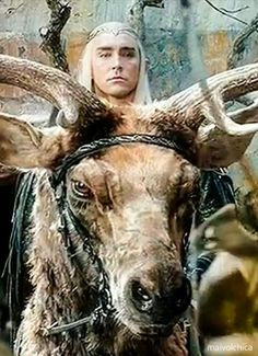 Lee Pace as Thranduil in The Hobbit Trilogies The Hobbit Thranduil, Lee Pace Thranduil, Irish Elk, Clydesdale Horses, Horse Names, Wood Elf, Shield Maiden, Jrr Tolkien, The Elf