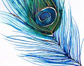 SALE Off - Large Wall Art - Decor - Watercolor - Peacock Feather I - Large Print - Poster - Modern Contemporary Art Tat idea Watercolor Peacock, Peacock Painting, Peacock Art, Watercolor Paintings, Tattoo Watercolor, Peacock Feathers, Painting Tattoo, Watercolor Illustration, Painting Art