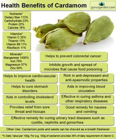 Health benefits of cardamom include gastrointestinal protection, cholesterol con. Health benefits of cardamom include gastrointestinal protection, cholesterol control, control of cancer, relief from cardiovascular issues. Matcha Benefits, Coconut Health Benefits, Cardamom Benefits, Benefits Of Saffron, Fruit Benefits, Herbal Remedies, Health Remedies, Tomato Nutrition, Salud Natural