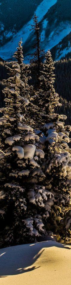 Aspen Mountain by Thomas O'brien   www.tmophoto.com
