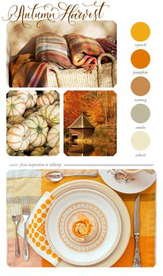 Autumn harvest tabletop inspiration - color palette | color my world
