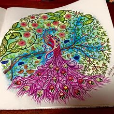 Secret Garden Adult Coloring Peacock