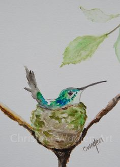 Hummingbird in nest original watercolor 5 x by ChristinaWootenArt