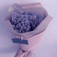 Violet Aesthetic, Lavender Aesthetic, Blue Aesthetic Pastel, Aesthetic Colors, Flower Aesthetic, Aesthetic Images, Aesthetic Vintage, Aesthetic Shop, Purple Love