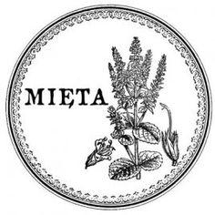 Etykiety na przyprawy Celtic Dragon Tattoos, Decoupage, Papel Vintage, Custom Stamps, Printable Paper, Handicraft, Free Printables, Farmhouse Decor, Logo Design