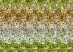 antelope-antelope_g-levine.jpg