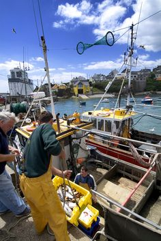 Unloaded the catch from fishing boats at Ballycotton in County Cork, Ireland. Cork Ireland, Ireland Travel, Irish American, American Girl, County Cork, Irish Eyes, Emerald Isle, 12th Century, Fishing Boats