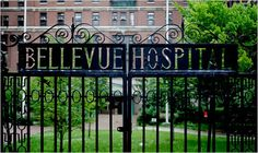 The Gates of Bellevue Hospital, New York City, New York: I'll go to pay my respects to Charles Norris and Alexander Gettler.
