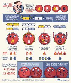 Los grupos sanguíneos y sus tipos
