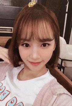 Photo album containing 12 pictures of IZ*ONE Cool Girl, My Girl, Secret Diary, Woollim Entertainment, Japanese Girl Group, Beautiful Fairies, The Wiz, Korean Beauty, K Idols