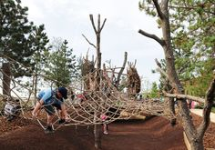 Tumbling Bay Playground and Timber Lodge   Erect Architecture