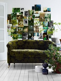wall art with numerous photos of the same color as furniture. Green Living Room